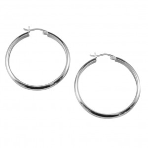 PDC SS Polished Half Round Tube Earrings