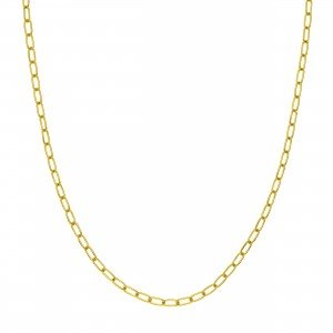 PD Collection 14k Gold 3.45mm Paper Clip Chain