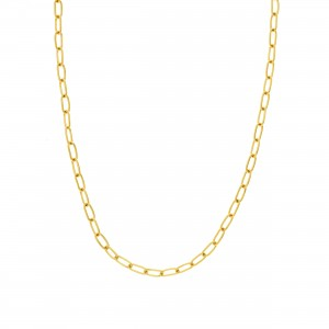 PD Collection 14k Gold 5mm Paper Clip Chain